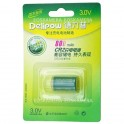 Delipow CR2 Rechargeable
